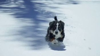 GMC Sierra TV Spot, 'Puppy' [T1] - Thumbnail 4