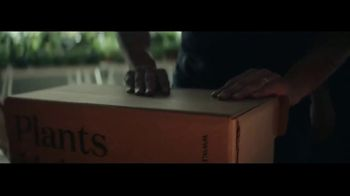 Shopify TV Spot, 'Kids Guitars and Potted Plants'