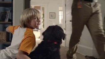 The Home Depot TV Spot, 'Filled With Memories: Official Carpet of the Puppy Bowl' - Thumbnail 6