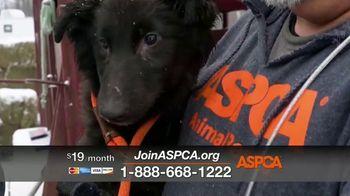 ASPCA TV Spot, 'The Winter Cold' - Thumbnail 9