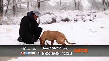 ASPCA TV Spot, 'The Winter Cold' - Thumbnail 5