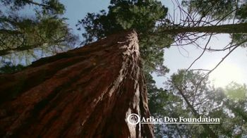 Arbor Day Foundation TV Spot, 'Essential to Life' - Thumbnail 1