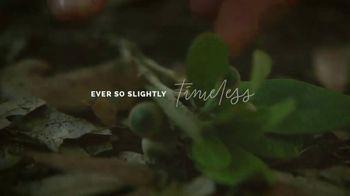Amelia Island Tourist Development Council TV Spot, 'Ever So Slightly Timeless' - Thumbnail 8