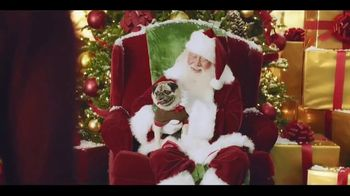 Chewy.com TV Spot, 'Holidays: All I Want for Christmas' - Thumbnail 1