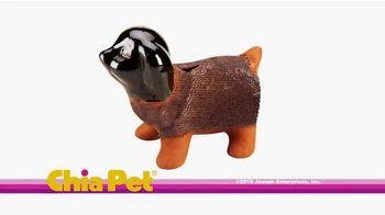 Chia Pet TV Spot, 'Rick and Morty, Unicorns and Bob Ross' - Thumbnail 1