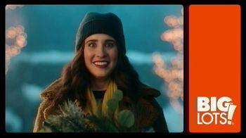 Big Lots Big Black Friday Sale TV Spot, 'Ho-Ho-Whoa: Fireplaces' - Thumbnail 1