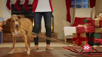 Chewy.com TV Spot, 'Holidays: Unbox Holiday Savings' - Thumbnail 8