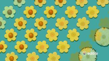 Edible Arrangements TV Spot, 'Every Day'