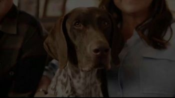 Cosequin TV Spot, 'Joint Health for All Dogs' - Thumbnail 1