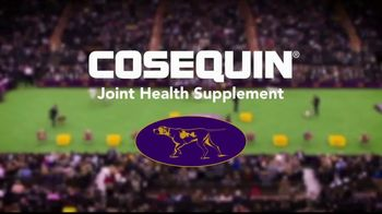 Cosequin TV Spot, 'Joint Health for All Dogs' - Thumbnail 10