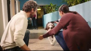 Cosequin TV Spot, 'Joint Health for All Dogs' - Thumbnail 4