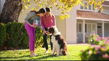 Cosequin TV Spot, 'Joint Health for All Dogs' - Thumbnail 6