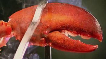 Red Lobster Lobsterfest TV Spot, 'Calling All Lobster Fans' - Thumbnail 1
