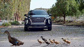 Hyundai Spring Sales Event TV Spot, 'Duck Crossing' [T2]