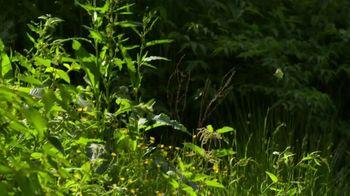 Biltmore Estate TV Spot, 'Biltmore Blooms' - Thumbnail 1
