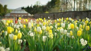 Biltmore Estate TV Spot, 'Biltmore Blooms' - Thumbnail 4
