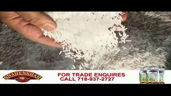 Shahenshah Rice TV Spot, 'Basmati Rice' - Thumbnail 8