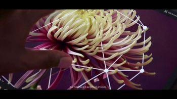 Microsoft Surface TV Spot, 'El tacto' canción de Minnie Riperton [Spanish]