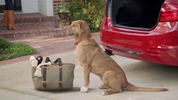BMW Certified TV Spot, 'Dog' [T2] - 17 commercial airings