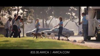 Amica Mutual Insurance Company TV Spot, 'Rescue Dog' - Thumbnail 5