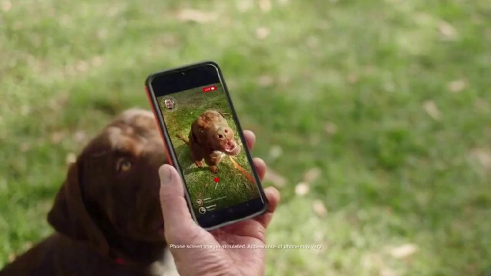 Consumer Cellular TV Commercial, 'Dog Park: Talk, Text, Data $20+ a Month: Switch and Get $50'