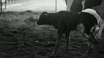 Chevron TV Spot, 'Pasture' - Thumbnail 6