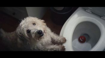 Clorox Toilet Bowl Cleaner TV Spot, 'Don't Fear the Bowl: Dog' Song by Donnie Daydream - Thumbnail 5