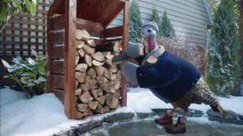Chantix TV Spot, 'Snow Turkey' - Thumbnail 5
