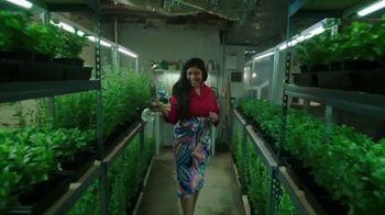 Splenda Stevia TV Spot, 'Sweetest Thing You Could Grow' - Thumbnail 4