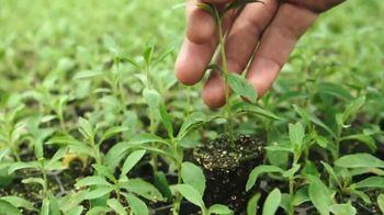 Splenda Stevia TV Spot, 'Sweetest Thing You Could Grow' - Thumbnail 8