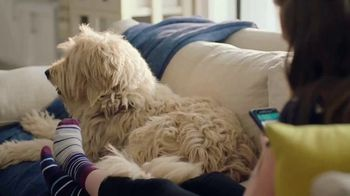 PetSmart TV Spot, 'Online Booking: It's That Easy!' - Thumbnail 5
