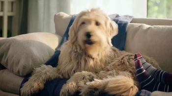 PetSmart TV Spot, 'Online Booking: It's That Easy!' - Thumbnail 9
