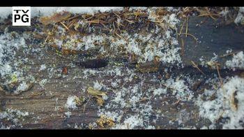 CuriosityStream TV Spot, 'Amazing Dinoworld: $19.99' - Thumbnail 1