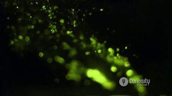 CuriosityStream TV Spot, 'Light on Earth' - Thumbnail 6