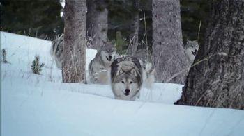 Blue Buffalo TV Spot, 'The Hunt Continues: Dog Treats'