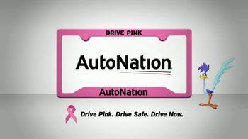 AutoNation TV Spot, 'Drive Safe for Less: $100' - Thumbnail 10