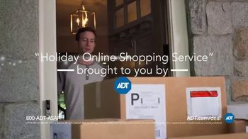 ADT TV Spot, 'Holiday Online Shopping Service' - Thumbnail 9