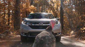 Happy Honda Days TV Spot, 'Turkey' [T2] - Thumbnail 5