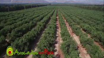 Avocados From Peru TV Spot, 'Just Look Where They Come From' - Thumbnail 7