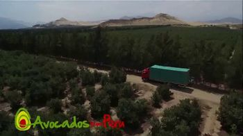 Avocados From Peru TV Spot, 'Just Look Where They Come From' - Thumbnail 8