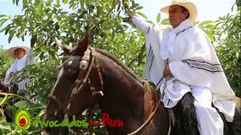 Avocados From Peru TV Spot, 'Just Look Where They Come From' - Thumbnail 9