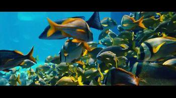 Atlantis TV Spot, 'Are You Ready?: 30 Percent' - Thumbnail 3