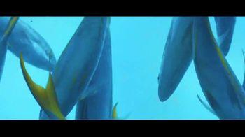 Atlantis TV Spot, 'Are You Ready?: 30 Percent' - Thumbnail 8
