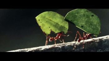 2018 GMC Terrain TV Spot, 'The Strength of an Ant'