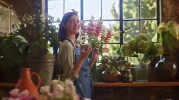 Sabra Snackers TV Spot, 'More Fun' - Thumbnail 4