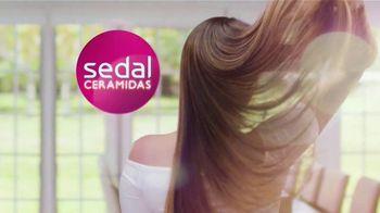 Sedal Ceramidas TV Spot, 'Brillo natural' [Spanish] - Thumbnail 5