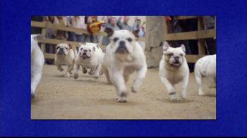 GEICO TV Spot, 'Jeopardy!: Running of the Bulldogs' - Thumbnail 2