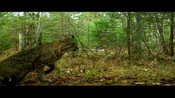 BTN LiveBIG TV Spot, 'Michigan Wildlife Survey' - Thumbnail 7