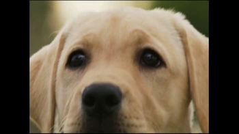 Southeastern Guide Dogs TV Spot, 'A Dog I'm Not' - Thumbnail 8