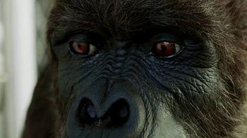 Gorilla Mounting Tape TV Spot, 'Stare Down' - Thumbnail 5